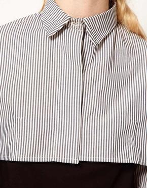 Media camisa  3