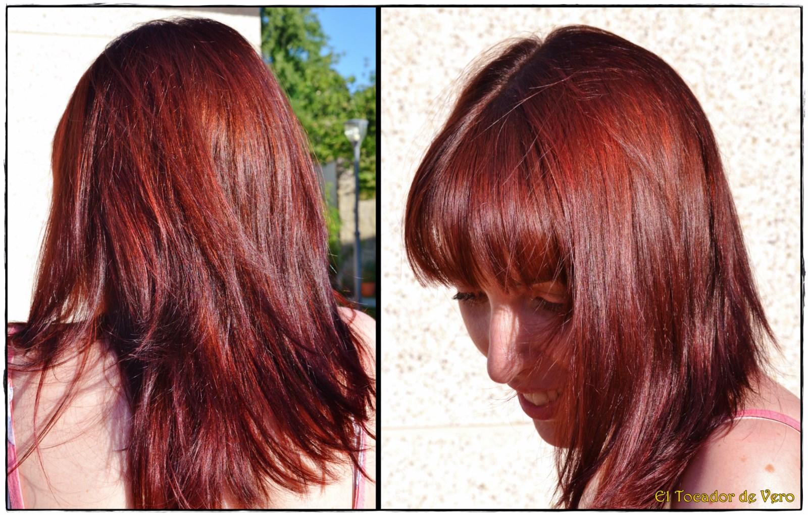 El aceite del pino albar la utilidad para los cabellos