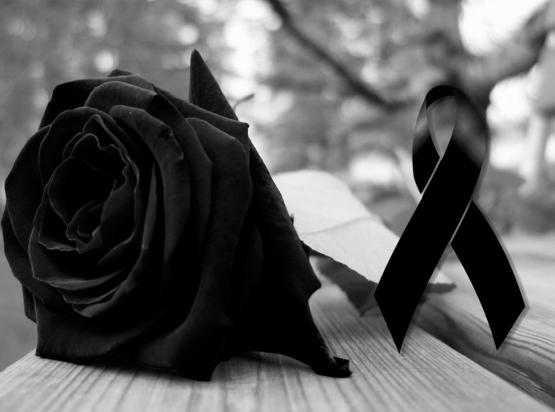 rosa negra - galicia de luto