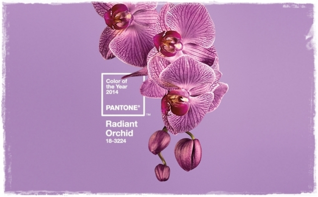 Radiant orchid pantone 1 (FILEminimizer)