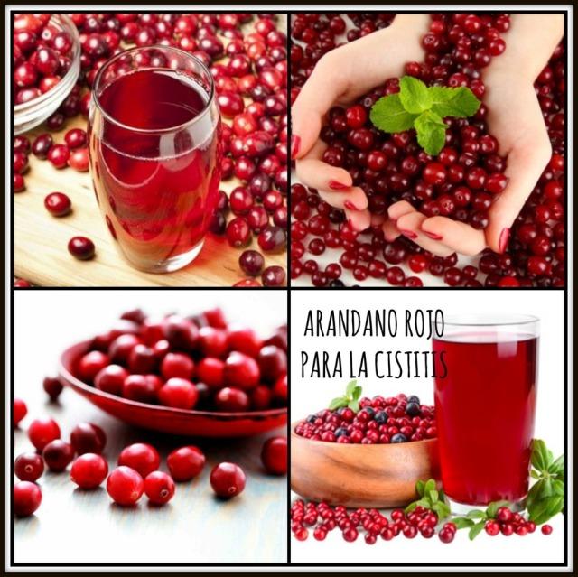 arandano rojo cistitis