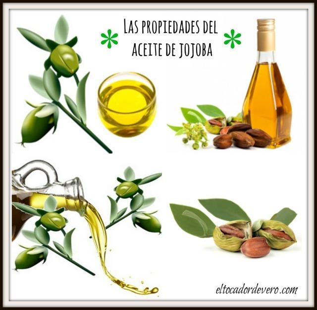 propiedades-aceite-jojoba eltocadordevero