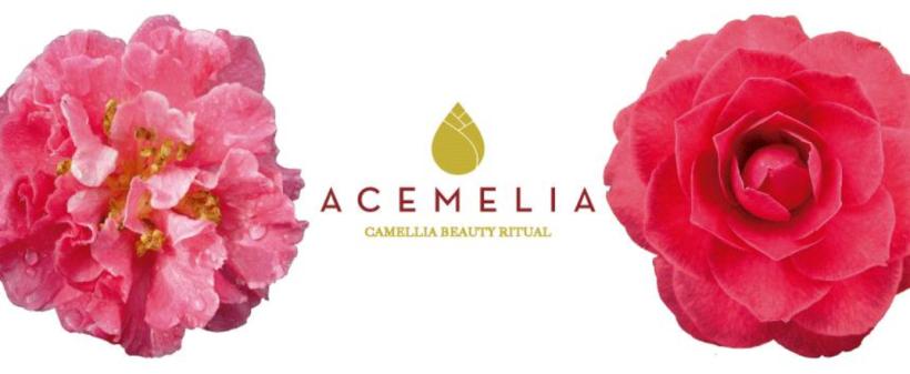 acemelia_logo